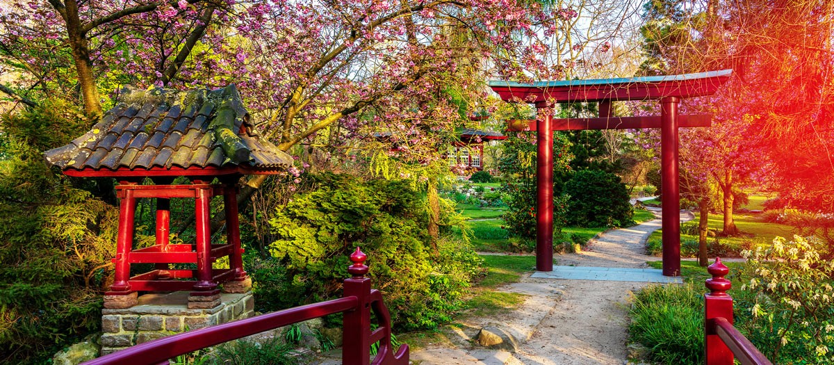Der japanische Garten ist als überregionale Touristenattraktion bekannt.